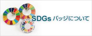 SDGsバッヂについて